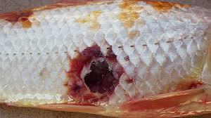 Cá nuôi chết do bệnh đốm đỏ