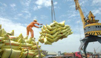 Phát triển nông nghiệp bền vững, đưa lúa gạo Việt Nam ra trường quốc tế