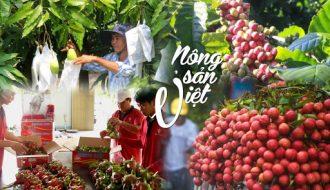 Trái cây Việt rộng cửa sang EU nổi bật là thanh long, bưởi, dừa